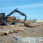 5-Crane-unloading-in-log-yard
