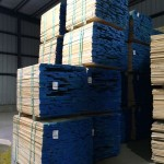 Export Packs