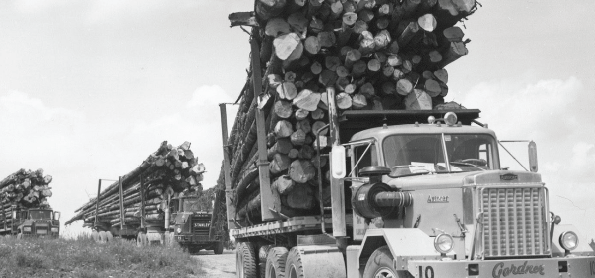 Old Logging Trucks