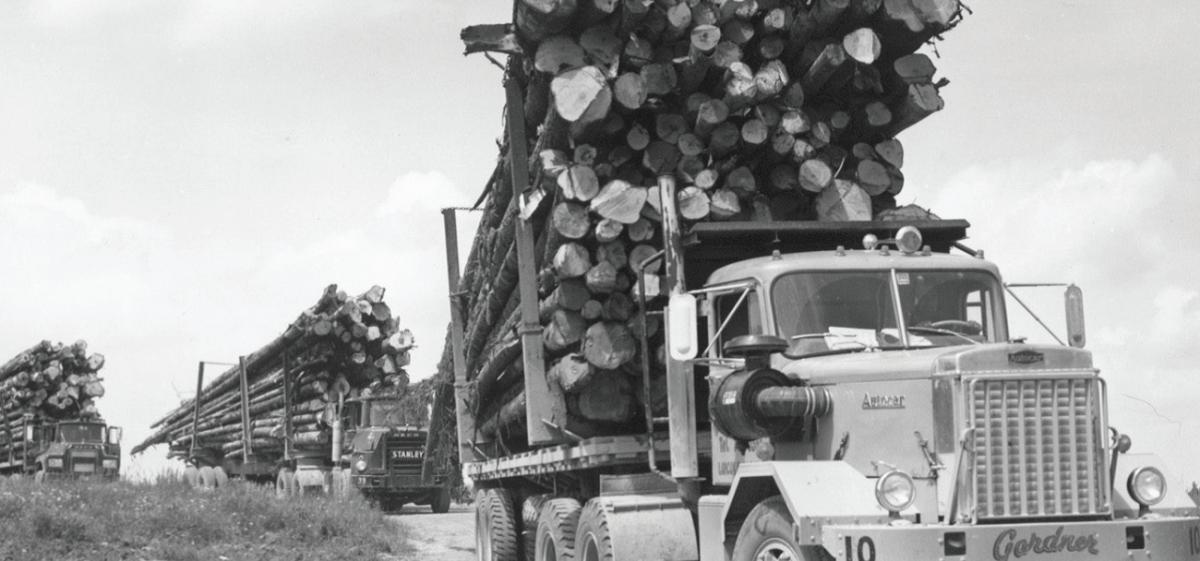 Old Logging Trucks
